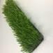 花蓮縣人造草坪地毯彩虹跑道廠家直銷總代直銷免費拿樣