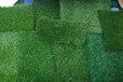 門頭溝人造草坪地毯彩虹跑道廠家直銷總代直銷免費拿樣