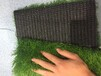 畢節足球場人造草坪廠家平方米價格總代直銷免費拿樣