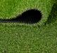 北京人工草坪价格环保草坪装饰草坪地毯厂家幼儿园