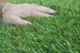 青海足球场人造草坪厂家平方米价格总代直销免费拿样