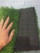 杭州仿真草皮幼兒園草坪廠家直銷包工包料全國發貨