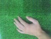 可克達拉人造草坪幼兒園草坪廠家直銷來電詢價免費拿樣