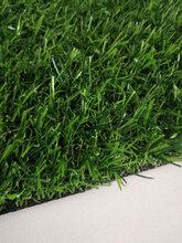 人造草坪技术体现在哪里环保仿真草皮订制可开票图片