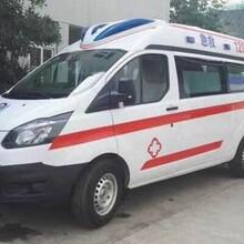 江西省120救护车带呼吸机出租-新生儿转院图片