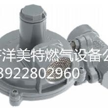 AMCO爱默科品牌SR113常用减压燃气阀图片