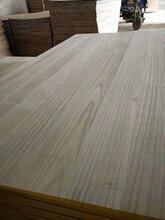 上海桐木拼板生產廠家圖片