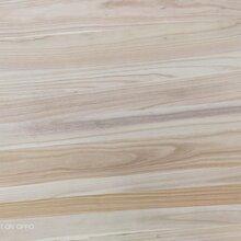 广州桐木拼板生产厂家图片