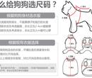广东狗狗服装趣逗派狗狗服装专业定制生产厂家图片