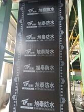 潍坊旭泰生产各种型号弹性体SBS防水卷材防水材料图片