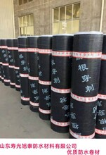 耐根穿刺防水卷材简介化学阻根耐根穿刺防水卷材品牌旭泰图片