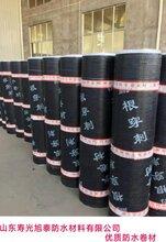 铜胎体耐根穿刺防水卷材4mm化学阻根防水卷材市场价图片