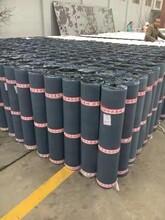 吉林3mm厚国标SBS防水卷价格图片