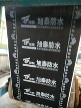 吉林3mm厚国标SBS防水卷市场价图片