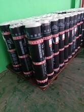 安顺弹性体SBS防水卷材生产厂家图片