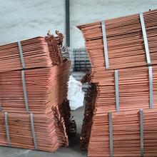 电解铜-阴极铜-铜丝铜块-磷铜原料图片