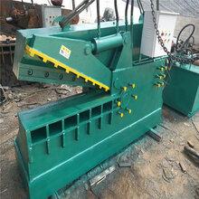 厂家供应鳄鱼式剪切机废金属剪断机钢板剪板机金属回收切断用剪切机设备图片