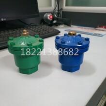 DN25絲口鑄鐵排氣閥QBI自動快速排氣閥廠家直銷圖片