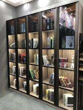 典范新款极简博洛尼款衣柜玻璃门铝材或半成品门定制