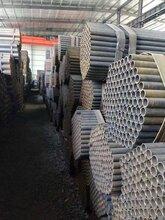 镀锌管,镀锌无缝管,美标镀锌钢管,镀锌钢管立柱成品仓库图片