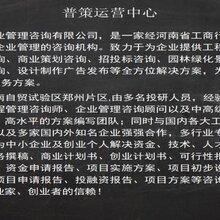 凤凰县可以写融资计划书-农业旅游