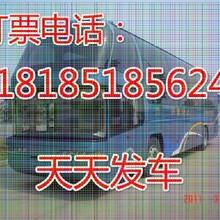 查贵阳到石首专线大巴+乘卧铺直达汽车(顺客票务代理服务部)图片