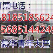 查兴义到温州专线客车+卧铺直达客车班次查询(顺客票务代理服务部)图片