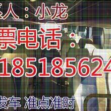 查兴义到来宾大巴+旅游大巴车(顺客票务代理服务部)图片