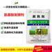 氨基酸發酵劑油枯豆粕菜籽花生芝麻餅棉籽餅發酵腐熟餅粕菌種