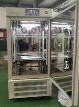 蘇州恒溫恒濕箱HWS-70B,量大價優圖片