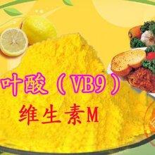 食品級營養強化劑葉酸維生素B9圖片