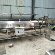 全自動涼皮機蒸汽式涼皮機專業生產蒸汽式蔬菜涼皮機商用小型河粉米皮機圖片