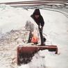 小型扫雪机工作有力扫雪机厂家大量批发