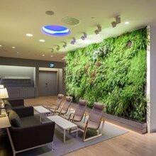 室内植物墙定制公司千山素集