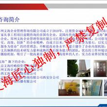 瀘州代寫項目申請報告便捷快速圖片