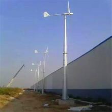 常州永磁风力发电机24v-300w垂直轴图片