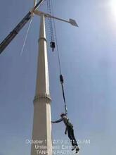 奉贤2020年国家支持新能源风力发电机/抗风能力强图片
