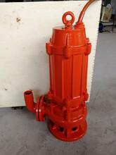 专业生产高温热水泵、电厂高温废水泵-当天订货当天发图片