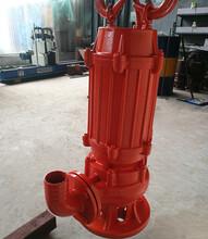 新款高温耐热排污泵-抽开水都可以图片