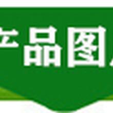 貴州新香椿苗的價格香椿苗基地直銷規格全圖片