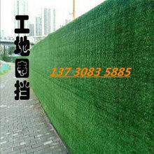 重庆四川人造草坪假草皮厂家仿真草坪围挡批发工地人造草坪墙图片