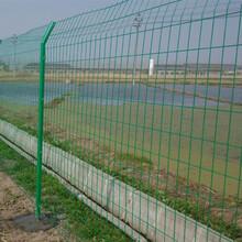四川護欄網廠家雙邊絲護欄網農場圈地綠色鐵絲網圖片