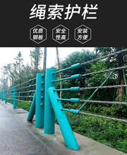 公路纜索護欄四川生產廠家道路繩索防護欄公園索道景觀防護欄圖片
