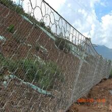 貴州邊坡防護網生產廠家防落石鋼絲繩護坡網貴州邊坡防護網系列圖片