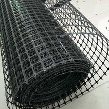 鋼塑土工格柵玻纖土工格柵塑料土工格柵四川生產廠家圖片