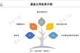 河北省做PPP项目标书公司-互联网模式