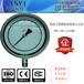 精密不銹鋼耐震壓力表