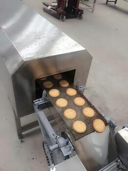 饼干喷油机生产线视频小型输送机小型梳理机