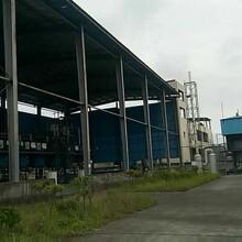 吲哚丁酸钾近期价格实力供应商生产图片