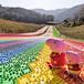 七彩滑道場地規劃設計不褪色不掉色四季可玩的彩虹滑道